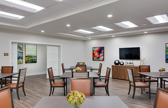 Panels and Troffers LED Lighting Dining Area